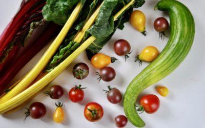 Ayurveda Tipps für den Herbst – Zeit für Erdung